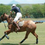 قهرمانی سوارکار آملی درمسابقات پرش با اسب شمال کشور