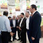 سازماندهی فروش فرآورده های کشاورزی توسط شهرداری آمل