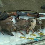 دستگیری شکارچی غیرمجاز در آمل