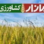 جای خالی شبکه تلویزیونی کشاورزی