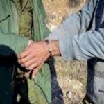 دستگیری باند خرید وفروش گوشت خوک در آمل